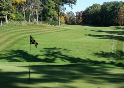 Golf Courses of Lawsonia - Woodlands Course - Hole 14 Green