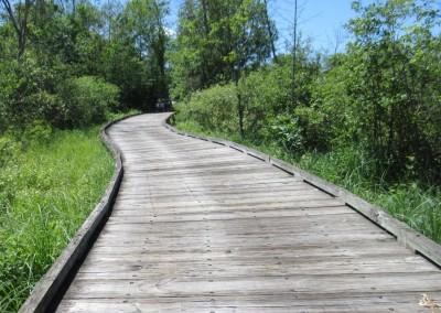 The Bog Golf Course Hole 8 Bridge