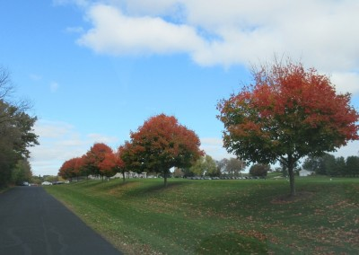 Old Hickory Golf Club Driveway