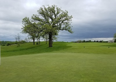 Broadlands Golf Club Hole 14 Green