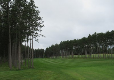 Northern Bay Castle Course Hole 14 Tee Trees