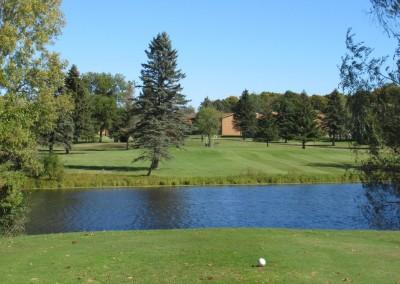 Fox Hills Resort Fox Creek Course Par 3 Tee