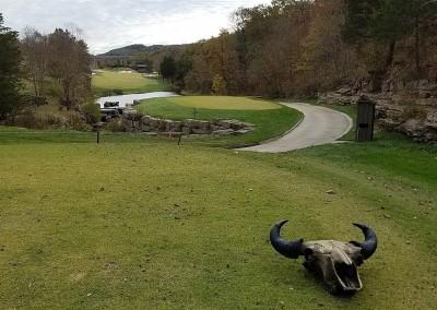 Buffalo Ridge Hole 14 Back Tee