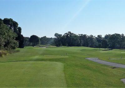 Geneva National Golf Resort Palmer Course Hole 2 Tee Shot