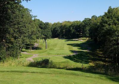 Geneva National Golf Resort Palmer Course Hole 6 Tee