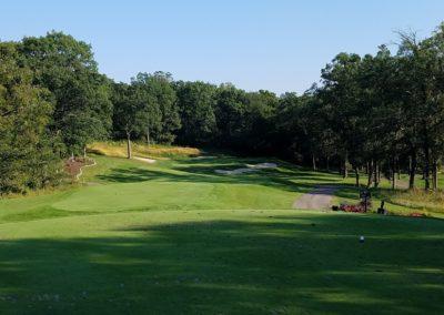 Geneva National Golf Resort Trevino Course Hole 6 Par 3 Tee