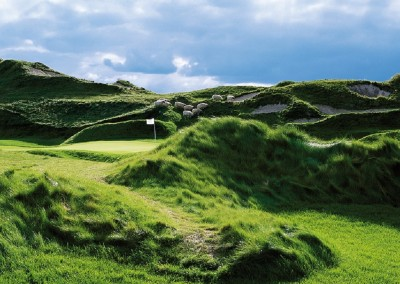 Whistling Straits Irish Course Par 3 Sheep