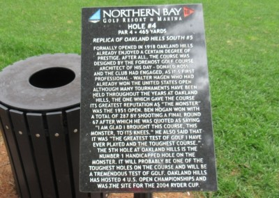 Northern Bay Castle Course Hole 4 Replica Sign