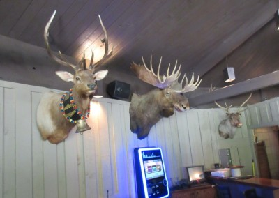 Devil's Head Resort Sports Bar Wall