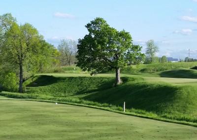 Blackwolf Run Meadow Valleys Golf Course Hole 17 Maple Syrup Tee