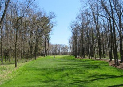 Blackwolf Run Meadow Valleys Spring Hole 10 Tee