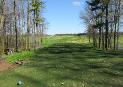Blackwolf Run Meadow Valleys Spring Hole 3 Tee