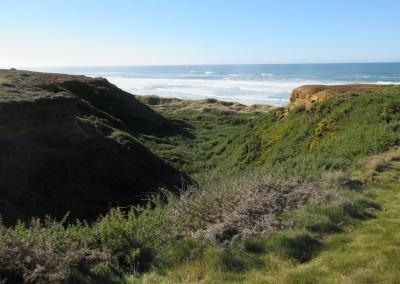 Bandon Dunes Hole 16 Ravine