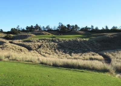 Bandon Dunes Hole 2 Par 3 Tee