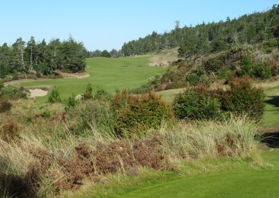 Bandon Trails Hole 16 Par 5 Tee
