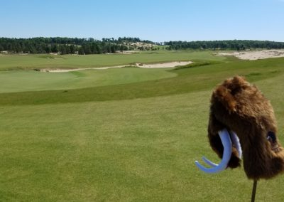 Sand Valley Resort Mammoth Dunes Golf Course Hole 18 Headcover