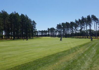 Stevens Point Country Club (130) Hole 5 Fairway